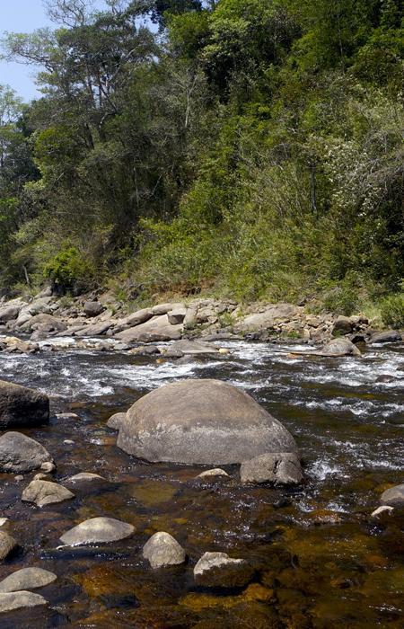 Cartographier l'évolution de la biodiversité à partir d'un prélèvement d'eau - Spygen